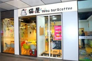 The entrance for the best cat cafe in beijing