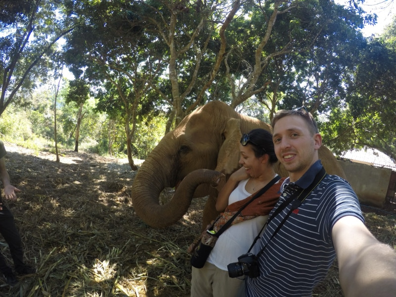 2 people with an elephant having some fun