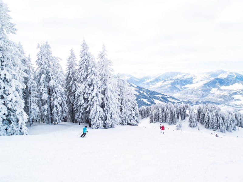 Snowy hill with tall snow covered trees and two skiiers