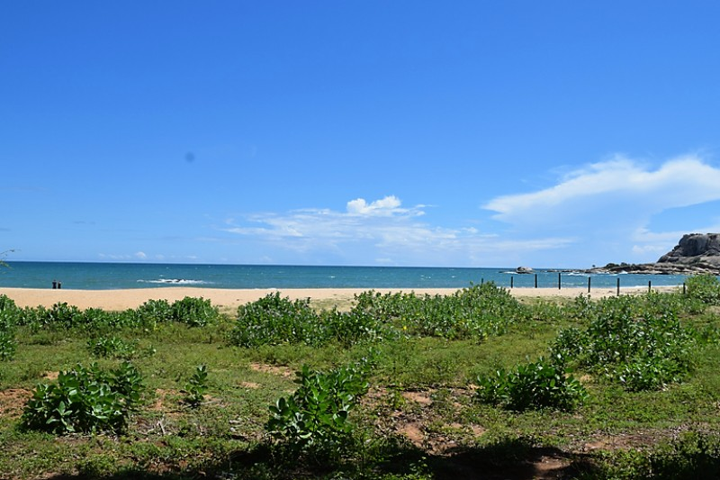 Green bushes in front on the beach