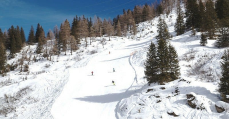 Cold Places To Go In February Austria - Steep snowy slope dotted with trees