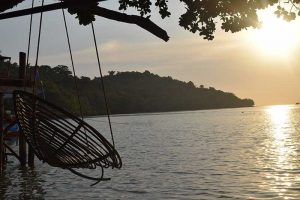 a wicker chair hanging from a tree over the top of a bay in koh ta kiev
