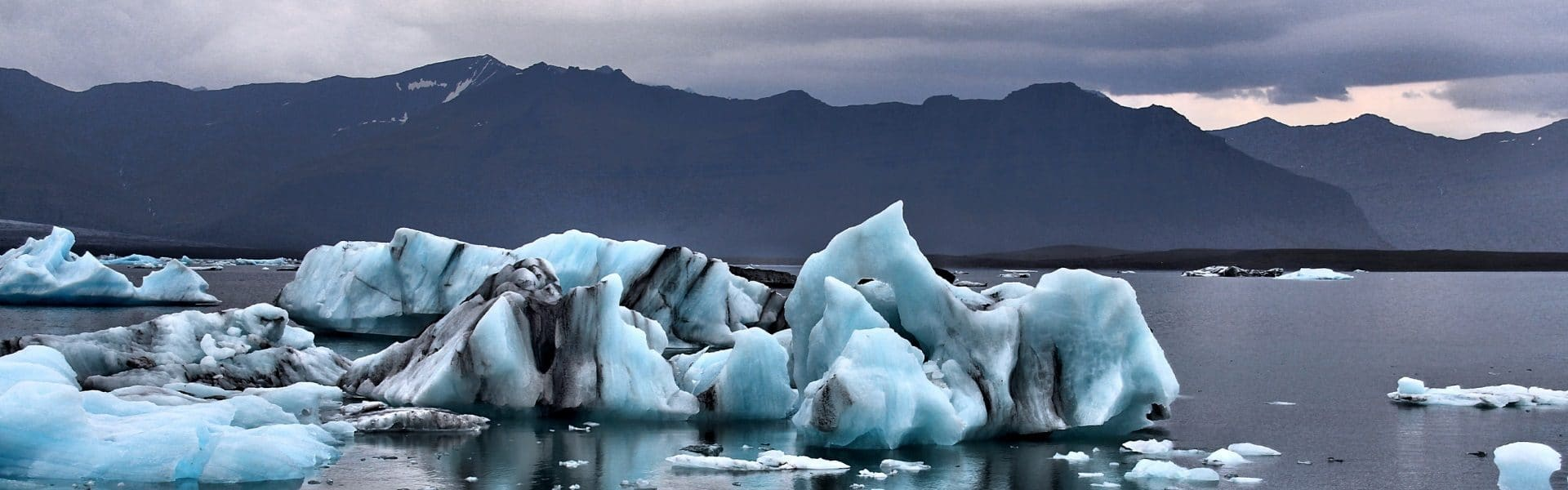 Bluey white icebergs in the water