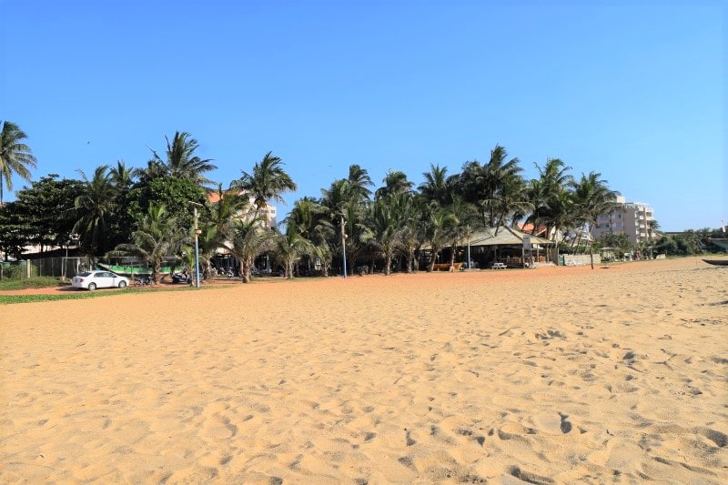 Yellow sand beach with palm trees in the background