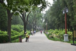 A path going through a park, pictured whilst backpacking China