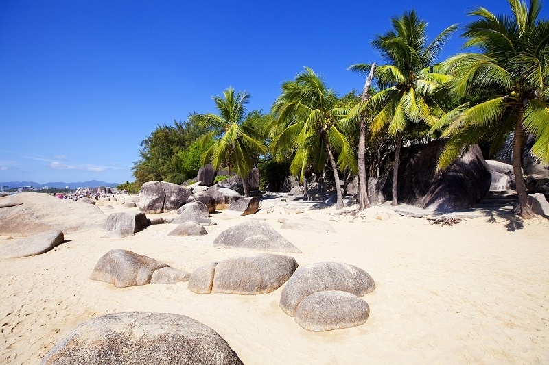 A beach with rocks and palm trees decorating the shore line