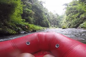 A river in the middle of a valley in Bali. One of the best activities for 1 week in Bali