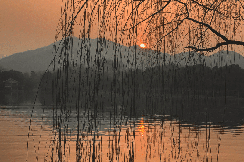 Orange sunset with some hanging branches. Hangzhou is one of the best places to visit in China in September