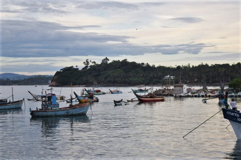 Small colourful fishing boats in the sea with mountain covered in forest i the background and low sun